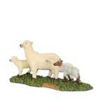 kopie van 601595 sheep