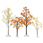 56 52655 village autumn maple birch trees