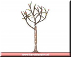 64124-9-inch dry tree with 25 mini lights