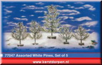 77047-assorted white pines set of 5