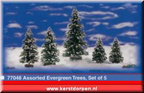 77048-assorted evergreen trees set of 5