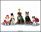 32126-costumed canines