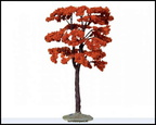 44794-yellowwood tree large 9 inch