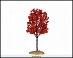44801-baldcypress tree medium 6 inch